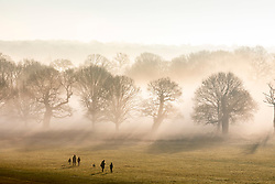 © Licensed to London News Pictures. 30/12/2019. London, UK. Dog walkers and families enjoy a wonderful misty morning in Richmond Park, London as forecasters predict unseasonably warm weather and possibly the the warmest New Year's Eve for over a 170 years. Photo credit: Alex Lentati/LNP