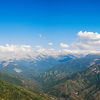 Sequoia National Park by Anthony Estes