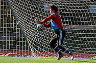 Mount Anthony's Hunter Davis (1) makes a save during the quarterfinal boys soccer game between Mount Anthony and Burlington at Buck Hard Field on Friday afternoon October 23, 2015 in Burlington. (BRIAN JENKINS/ for the FREE PRESS)