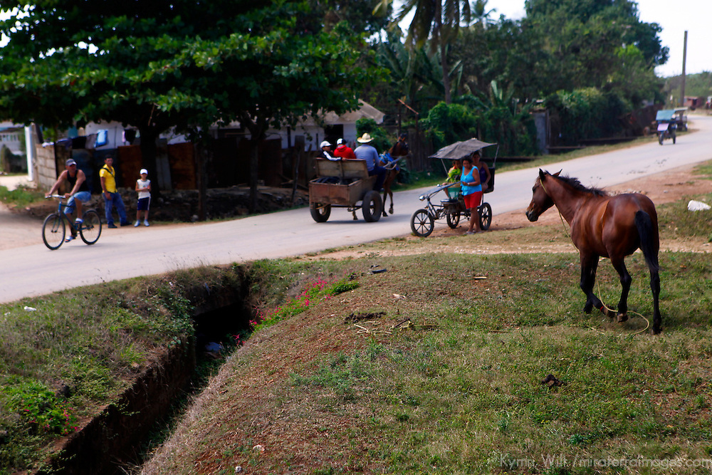 Central America, Cuba, Remedios. Horses, carts and bicycles of Remedios.