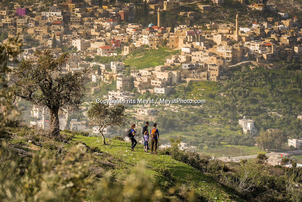 Palestine, March 2015. Hikers walk into the sunset on Mt Hureish on the section from Sanur to Sebastia. The Abraham Path is a long-distance walking trail across the Middle East which connects the sites visited by the patriarch Abraham. The trail passes through sites of Abrahamic history, varied landscapes, and a myriad of communities of different faiths and cultures, which reflect the rich diversity of the Middle East. Photo by Frits Meyst / MeystPhoto.com for AbrahamPath.org