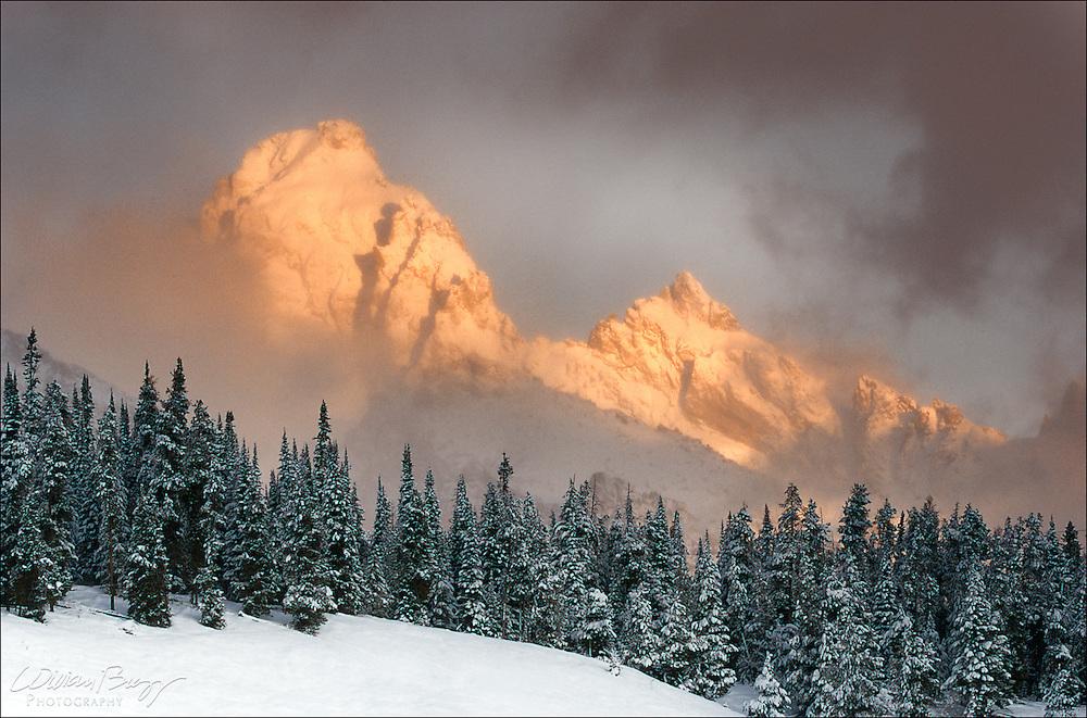 Grand Teton & Teewinot Aspenglow