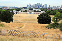 &copy; Licensed to London News Pictures. 20/07/2018<br /> Greenwich, UK. Burnt dry grass on Greenwich Park in London, caused by a prolonged heatwave and dry period across the south of England. Photo credit: Grant Falvey/LNP