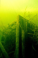 Fish Crib<br />