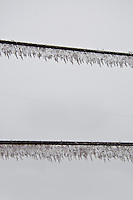 Mt. Rigi, Central Switzerland. Two icy wires with icicles hanging from their length.