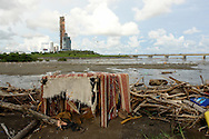 La contaminaci&oacute;n de playas en Am&eacute;rica Latina y el Caribe, causadas por descargas sin control de desag&uuml;es dom&eacute;sticos no tratados, constituye un problema serio de salud para la poblaci&oacute;n; en algunos casos son problemas permanentes de algunas playas. <br /> <br /> Implica poner en riesgo la salud, pues tal audacia puede provocar irritaci&oacute;n en la piel, infecciones en o&iacute;dos, ojos y aparato respiratorio, malestar estomacal y hasta diarrea por infecciones gastrointestinales.<br /> <br /> El problema no termina en la salud humana. Debido a la contaminaci&oacute;n de las zonas costeras y a las descargas agr&iacute;colas, dom&eacute;sticas e industriales, se han encontrado en ostiones y peces que llegan a nuestras mesas sustancias t&oacute;xicas como cadmio, plomo, mercurio, cobre, zinc, compuestos org&aacute;nicos persistentes como plaguicidas, hidrocarburos y bacterias de salmonella y de c&oacute;lera.<br /> <br /> Jenny Echeverr&iacute;a, declar&oacute; que el problema de la basura es muy serio, porque los desechos se convierten en &ldquo;trampas de muerte&rdquo; para la flora y fauna marina.<br /> <br /> Cientos de especies, al ingerir los desechos, mueren intoxicados, mientras los arrecifes coralinos son tan fr&aacute;giles que desaparecen.<br /> <br /> &copy;Alejandro Balaguer/Fundaci&oacute;n Albatros Media.