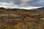Autumn at Þingvellir