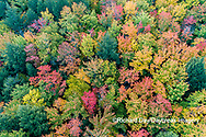 64776-02116 Aerial view of Hugoboom Lake in fall color Alger Co. MI
