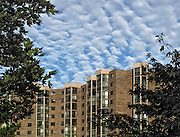 Upper half of a high rise apartment building in the Montebello Condominium, Alexandria, Virginia, under an even, lumpy looking layer of altocumulus cloud.  The building windows gleam and leafy branches frame the scene left and right.  The effect is an angular two dimensional design out of a very three dimensional subject.