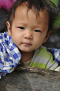 Portrait of an Indian toddler boy. Photographed in India, Sikkim