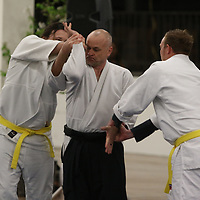Aaron Dale of Mid South Aikido does a fighting demonstration Saturday at the Tupelo Cherry Blossom Festival