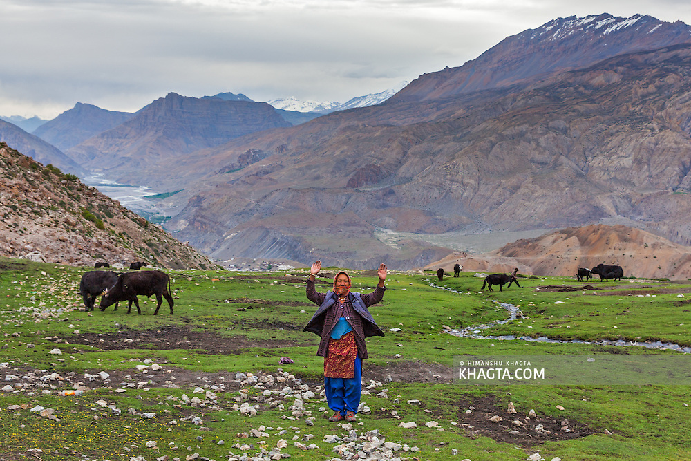 A funny Spiti lady reacts when the camera is pointed on her by raising both her hands in air, in the Doagsar of Mane Yongma, Spiti, Himachal Pradesh, India
