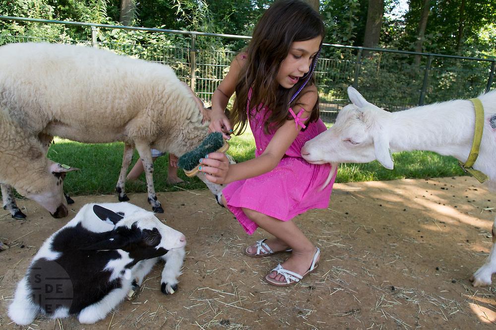 In Dordrecht wil een geit de jurk van een meisje eten. Het meisje verzorgt de dieren in de kinderboerderij van Natuur- en milieucentrum Weizigt.<br /> <br /> In Dordrecht a goats tries to eat the skirt of a girl who is taking care of the animals.