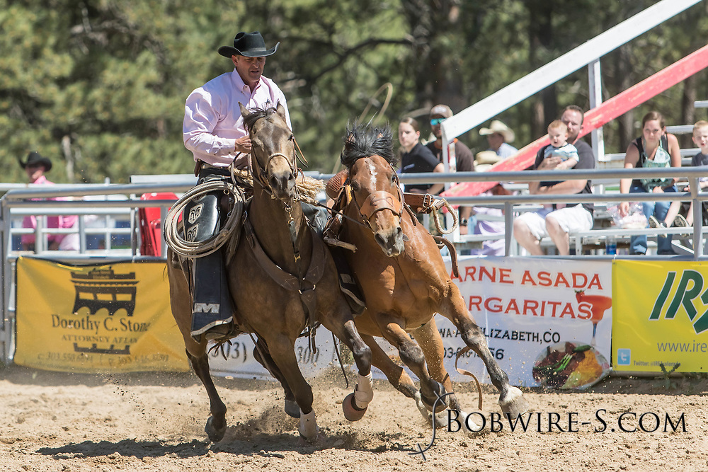 Pickup man Duane Gilbert catches a saddle bronc in the first performance of the Elizabeth Stampede on Saturday, June 2, 2018.