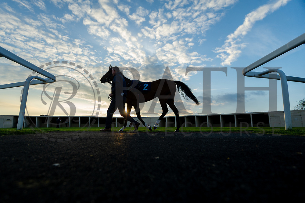 Test Valley ridden by Katherine Begley and trained by Tracey Barfoot-Saunt in the Follow Us On Twitter @Valuerater Novice Stakes race.  - Mandatory by-line: Ryan Hiscott/JMP - 01/05/2019 - HORSE RACING - Bath Racecourse - Bath, England - Wednesday 1 May 2019 Race Meeting