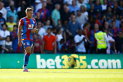 Goal disallowed, Dwight Gayle of Crystal Palace scores, Crystal Palace 1-0 Aston Villa - Mandatory byline: Jason Brown/JMP - 07966386802 - 22/08/2015 - FOOTBALL - London - Selhurst Park - Crystal Palace v Aston Villa - Barclays Premier League