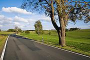 Landstraße, Landschaft Unterharz, Harz, Sachsen-Anhalt, Deutschland | road, landscape Unterharz, Harz, Saxony-Anhalt, Germany