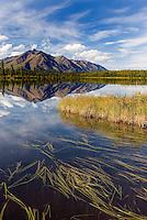Talkeetna Mountains reflected in lake along the Denali Highway Alaska