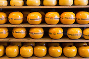 Edam cheese Noord Wester display on shelves in food store in the town of Edam, The Netherlands