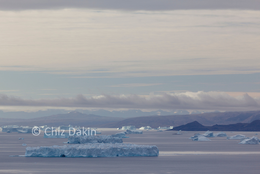 The icy coastline of Sydkap, E Greenland