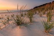 "The soft light of ""magic hour"" sets the Lake Michigan shoreline aglow."