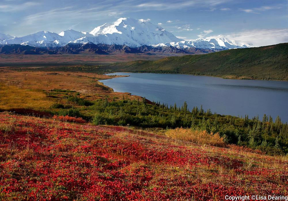 Wonder Lake and Mount Mckinley in Autumn, Denali National Park, Alaska