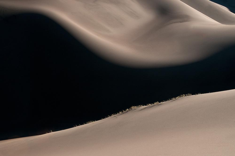 Sensuous Dunes