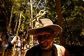 Palmeros de Chacao
