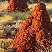Terrmite mounds in Karijini National Park, Western Australia.
