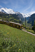Cog rail train, Jungfrau, Lauterbrunnental, Canton Bern, Alps, Switzerland