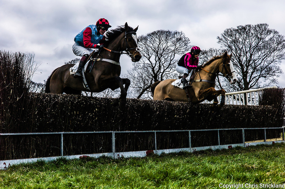 Corbridge, Northumberland, England, UK. 28th February 2016.  Racehorses jump a fence at the Tynedale Hunt annual Point to Point horse racing fixture.
