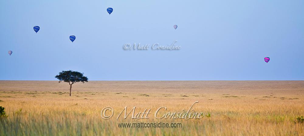 Balloons floating high in the early morning light over grassland savanna of the Masai Mara Reserve, Kenya, Africa,(photo by Wildlife Photographer Matt Considine)