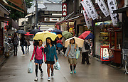 Miyajima Island, Hiroshima, Honshu, Japan