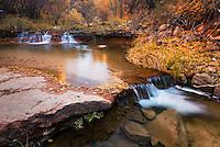 Left Fork of North Creek, Zion National Park Utah USA