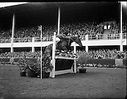Lt. Col. M Llewellyn on The Monarch, winner of the individual contest at RDS Horse Show.08/08/1952