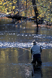 A fly-fisherman on the Lamprey River below Wiswall Dam. Durham, NH