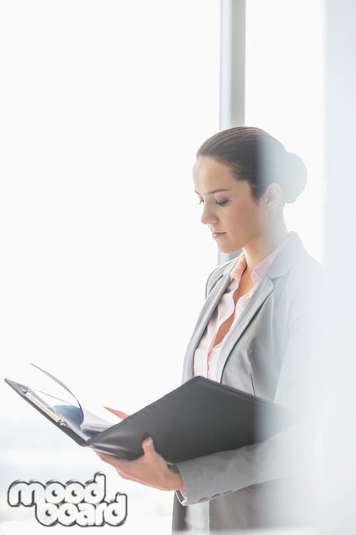 Side view of young businesswoman reading file in office