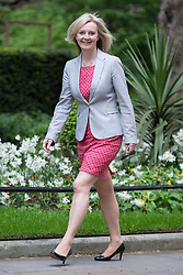 © Licensed to London News Pictures . 11/05/2015 . London , UK . LIZ TRUSS arrives at 10 Downing Street this afternoon (11th May 2015) . Photo credit : Joel Goodman/LNP