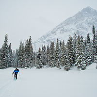 skiier sking across frozen lake in glacier national park, snow storm, cold winter skiing, glacier national park, montana
