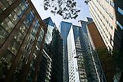 City Buildings,Bligh Street, Sydney Australia