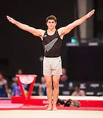 Artistic Gymnastics World Championships 2015