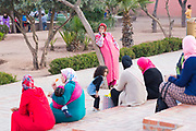 Koutoubia Park, Marrakesh, Morocco, 2016-04-20.<br /><br />It's easy to miss the tranquil, chilled out garden spaces found in the Koutoubia and Cyber parks, just opposite the bustling Djemma El Fna main square in Marrakesh.