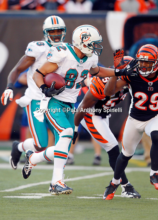 Miami Dolphins wide receiver Brian Hartline (82) runs a reverse for a big fourth quarter gain to the Cincinnati Bengals 19 yard line during the NFL week 8 football game against the Cincinnati Bengals on Sunday, October 31, 2010 in Cincinnati, Ohio. The Dolphins won the game 22-14. (©Paul Anthony Spinelli)