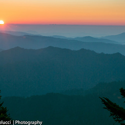 Mt. LeConte in the Great Smoky Mountains National Park, LeConte Lodge (Christina Paolucci, photographer)