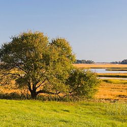 View of the salt marshes and the Essex River Massachusetts USA
