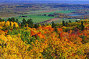 sugar maples in autumn splendor looking over the Ottawa Valley<br /> Gatineau Park<br /> Quebec<br /> Canada