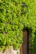 SANTILLANA DEL MAR, SPAIN - April 20 2018 - Stone wall texture with ivy growing around wooden doorway, Santillana del Mar, Cantabria, Spain.