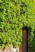 SANTILLANA DEL MAR, SPAIN - April 20 2018 - Stone wall texture with ivy growing around wooden doorway, Santillana del Mar, Cantabria, Spain.