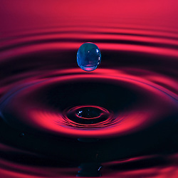 Fast action water drop photography