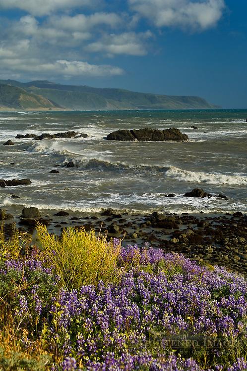Windswept waves crashing ashore along the Lost Coast near Cape Mendocino, California